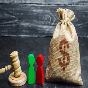 Money bag with 2 pawns and gavel