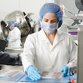 Lab techs working with samples in laboratory